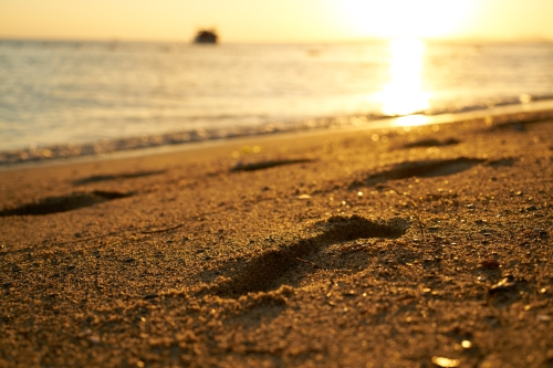 low angle image of footprints in the sand on a bright beach at sunrise